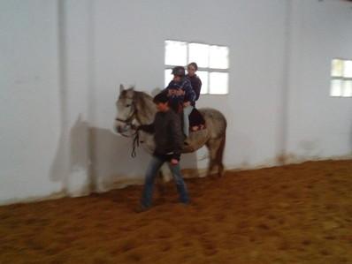 Terapia Asistida con caballos.
